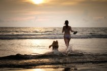Mexico, Nayarit, Young woman in bikini playing frisbee with her Golden Retriever dog at the beach, running into the ocean — Stock Photo