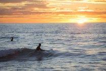 Dos surfistas al amanecer en el mar - foto de stock