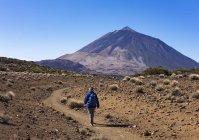 Spain, Canary Islands, Tenerife, Roques de Garcia, Mount Teide, Teide National Park, Female hiker on hiking trail Ruta Arenas Negras — Stock Photo