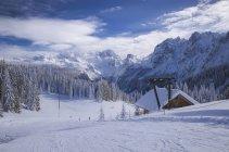 Austria, Dachstein, ski slope and trees  during daytime — Stock Photo