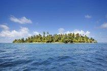 Panama, îles de San Blas, Grullos de Los Cayos pendant la journée — Photo de stock