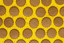 Filas de galletas de jengibre espolvoreadas con gránulos de azúcar sobre fondo amarillo - foto de stock