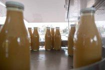 Apple juice being bottled in bottling plant — Stock Photo