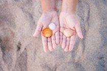 Mão de criança segurando mexilhões na praia arenosa — Fotografia de Stock