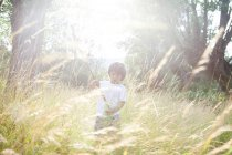 Little boy with wood stick playing on meadow at backlight — Stock Photo
