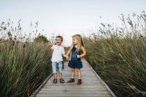 Carino caucasico fratellino e sorella avendo divertimento in erba verde lungo — Foto stock