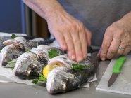 Male hands Preparing gilthead seabream for grilling — Stock Photo