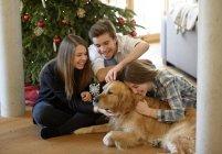 Трое молодых друзей обнимаются с Золотистым ретривером на полу в гостиной на Рождество — стоковое фото