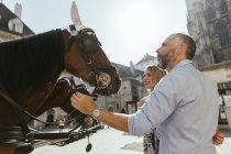 Casal olhando para cavalos em Stephansplatz enquanto passeia — Fotografia de Stock