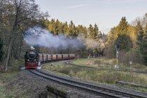 Germany, Saxony-Anhalt, Harz National Park, Harz Narrow Gauge Railway in autumn — Stock Photo