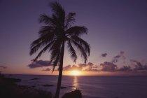 USA, Hawaii, Oahu, Waimea Bay am Abend — Stockfoto