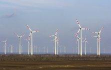 Österreich, Burgenland, Andau, wind-Blick auf den Park durch das Feld — Stockfoto