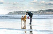 Spain, Gijon, man with his dog on the beach — Stock Photo