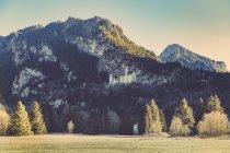 Deutschland, Bayern, Schloss Neuschwanstein — Stockfoto