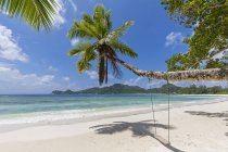 Seychelles, Mahe Island, beach Baie Lazare, swing hanging on cocos palm — Stock Photo