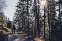 Німеччина, Berchtesgadener землі, чоловік і хлопчик на шляху в лісі взимку — стокове фото