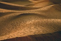 Tunisia, Sand dunes in the Sahara desert, Great Eastern Erg — Stock Photo