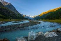 Ghiacciaio del Bernina e fiume all'alba in estate, valle di Roseg, Svizzera — Foto stock