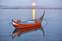 Традиционные moliceiro рыбацкая лодка на закате — стоковое фото