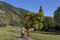 Austria, Tirol, Karwendel, excursionistas en el valle de Rohn - foto de stock