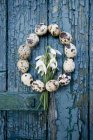 Wreath of quail eggs and snowdrops on old wooden door — Stock Photo