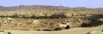 Туніс, Тамерза, Оазис у горах на кордоні Алжирський — стокове фото