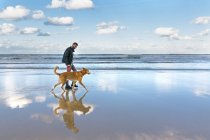 Man walking on the beach with his dog — Stock Photo