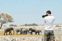 Namibia, Parco nazionale di Etosha, fotografo che cattura le immagini di elefanti vicino a una pozza d'acqua — Foto stock