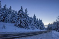 Germany, Lower Saxony, Harz National Park, mountain road in the evening — Stock Photo