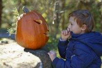 Хлопчик, вивчаючи Хеллоуїна гарбуза в лісі — стокове фото