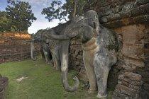 Thailand, Kamphaeng Phet, Ruins of Chakangrao, Wall with elephant statues, UNESCO World Heritage — Stock Photo