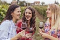 Три счастливые молодые женщины в винограднике Холдинг стакана красного вина — стоковое фото