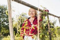 Sorrindo mulher sênior no jardim — Fotografia de Stock