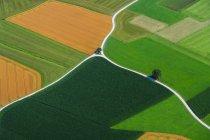 Vue aérienne de champs agricoles colorés au jour, Bavière, Allemagne — Photo de stock