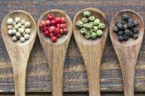 Rangée de quatre cuillères en bois de différents grains de poivre — Photo de stock
