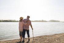 Vista posteriore della coppia anziana a braccetto sul lungofiume — Foto stock