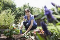 Smiling woman gardening in vegetable patch — Stock Photo