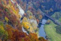Deutschland, Baden-Württemberg, Schwäbische Alb, obere Donautal im Naturpark obere Donau Herbst — Stockfoto