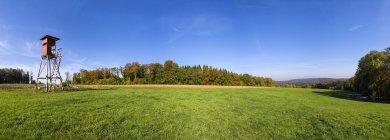 Alemania, Baden-wurttemberg, Nassach Valle, levantado piel en otoño - foto de stock