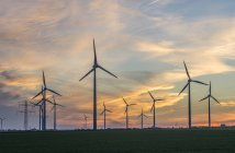 Wind farm view at sunset — Stock Photo
