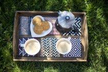 Espressomaschine mit zwei Tassen Kaffee und Keksen auf Holztablett auf Gras — Stockfoto