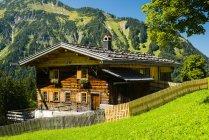 Германия, Бавария, Альгау, Альпы Альгау, Gerstruben, Крестьянский дом, ферма на зеленой траве — стоковое фото