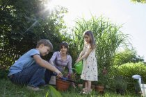 Caucasian mother, son and daughter gardening — Stock Photo