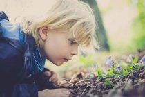 Мальчик изучает растения на земле — стоковое фото