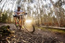Mountain biker driving in the forest — Stock Photo