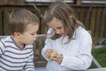 Deux enfants avec une châtaigne — Photo de stock