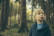 Little boy standing in forest and looking up in wonder — Stock Photo