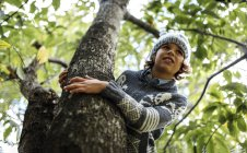 Portrait of boy wearing autumn fashion climbing on a tree — Stock Photo