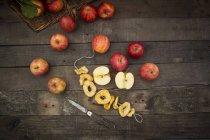 Mele rosse e anelli di mela essiccati — Foto stock