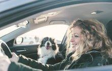 Mulher dirigindo carro, cão sentado no banco do passageiro — Fotografia de Stock